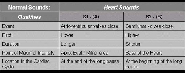 A comparison of S1 and S2 heart sounds.