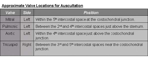 Approximate valve locations for auscultation (copyright J.M. Naylor 2001 University of Saskatchewan)