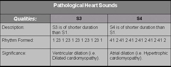 Qualities of S3 and S4 heart sounds.